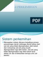 Fisiologi Urinary