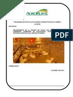 Mejoramiento de La Crianza de Cuyes en Soccospata