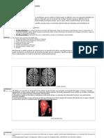 Cuadro Resumen de Patologia Celular