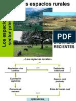Dinámicas recientes en el mundo rural