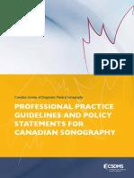 CSDMS ProfessionalPractice E