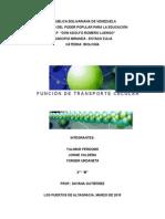 Funcion de Transporte Celular