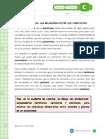 Articles-26517 Recurso Docx