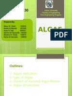algea presentation06-12-2014.pptx