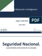 Seguridad Nacional y Sistemas de Inteligencia.pdf