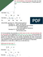 solucion+problemas+genetca