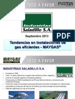 Jornadas Profesionales Gas Natural Fenosa Colombia Baja Sept2013