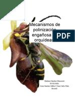 Mecanismos de Polinización Engañosa en Orquídeas