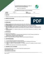 WI-10-23 Protocolo de Pruebas HidrostáTicas VáLvula s Trunnion
