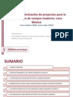 GESTION DE PROYECTOS EN CAMPOS MADUROS