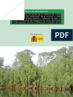 Estudio de La Cobertura de Mangle en Guatemala FINAL (1)