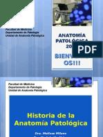 Historia de La Anatomía Patológica (Provisional Año 2012)