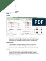 PHO Gene Information