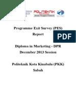 Programme Exit Survey (PES) DIS 2013 Session (DPR)
