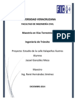 Proyecto Final Transito