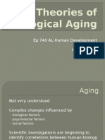 final presentation-theories of biological aging