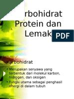 176439638 Karbohidrat Protein Dan Lemak