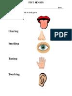 The Five Senses- Activity Sheet