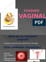 Expo Exu Da Do Vaginal