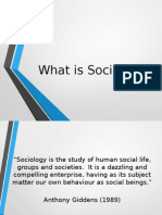1 - what is sociology inroduction pp