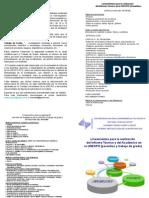 metodologia triptico (1)
