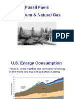Oil and Natural Gas Formation
