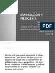 Especiaciòn y Filogenia 8ºb