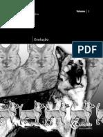 PDF Evolução.pdf