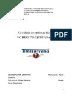 Analiza Costurilor Sc Bere Timisoreana Sa