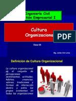 TEMA 6 cultura organizacional.pdf