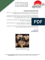 האגודה הישראלית ללימודי יפן - עלון מס' 8