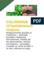 CELIDONIA