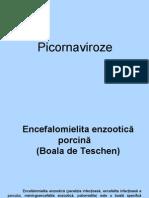 Picornaviroze