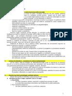 Audit Aptitudini 2014