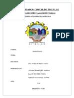 Informe de Cuenca Chira
