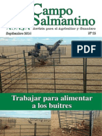 Campo Salmantino Septiembre 2014