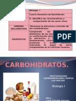 Carbohidratos.