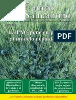 Campo Salmantino Mayo