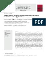 rizobacterias.pdf