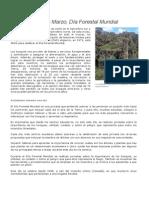El 21 de Marzo Dia Mundial Forestal