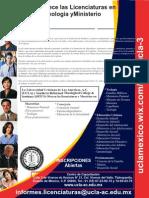 2 Licenciaturas- Noviembre 2014