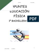 Apuntes Bachillerato 1 Educacion Fisica