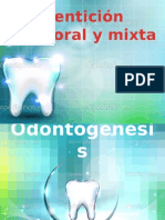 Dentición Temporal y Mixta