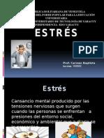 ESTRES DIA.pptx