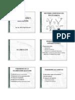 AFA Clase 14 Fecundacion Gestacion