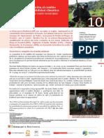 Estudio de caso 10 - Medidas de adaptación al cambio climático y la variabilidad climática en fincas cafetaleras en cuatro municipios de Madriz, Nicaragua