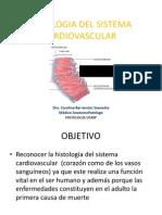 225891176-Sistema-Cardiovascular-pptx.pdf