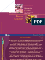 bioma desierto florido.ppt