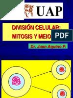 Bbbbbb Mitosis Dr Juan 2013