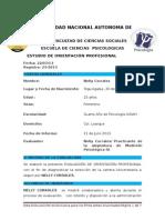 Informe de Orientacion Profesional